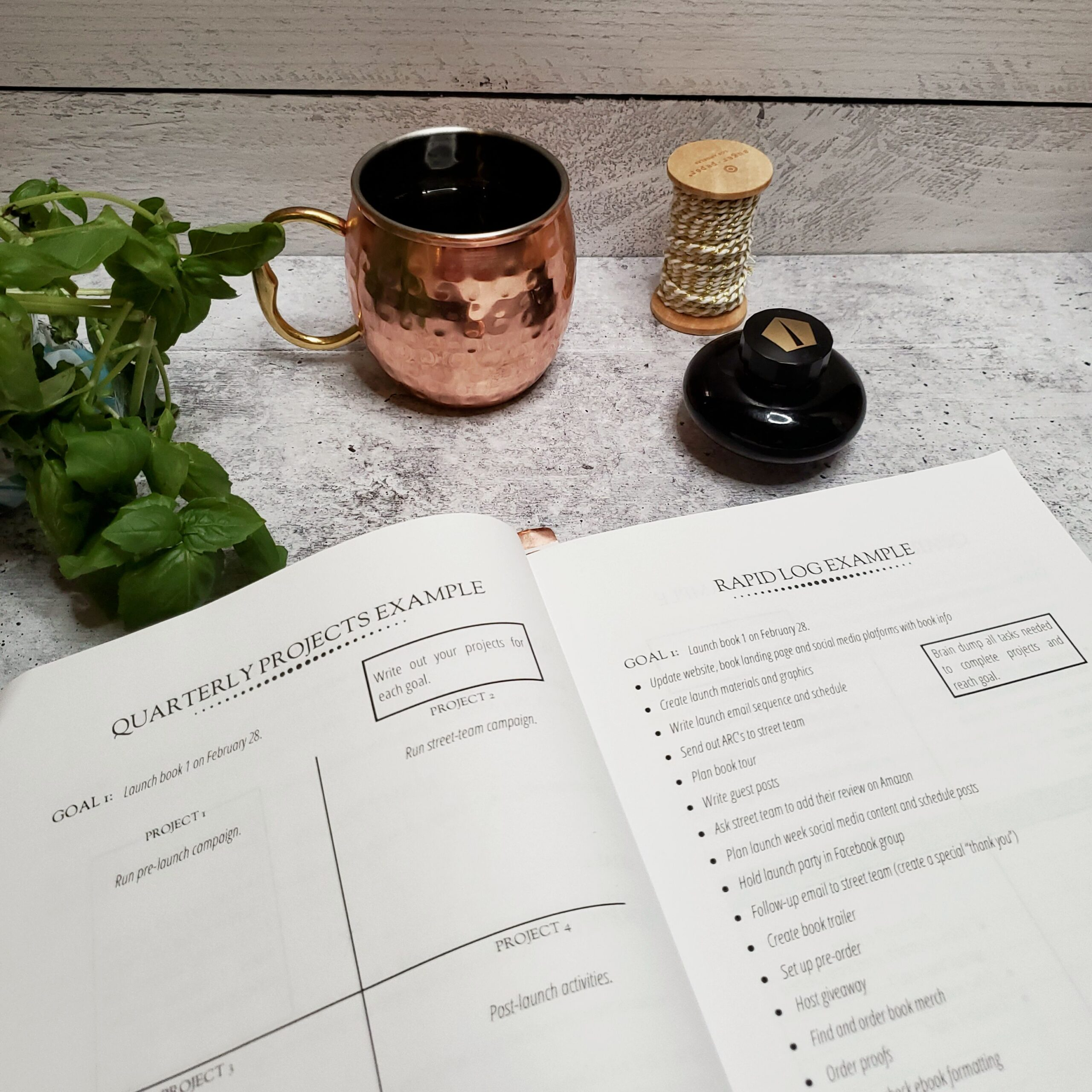 Thriving Scribes Planner - A planner for authors